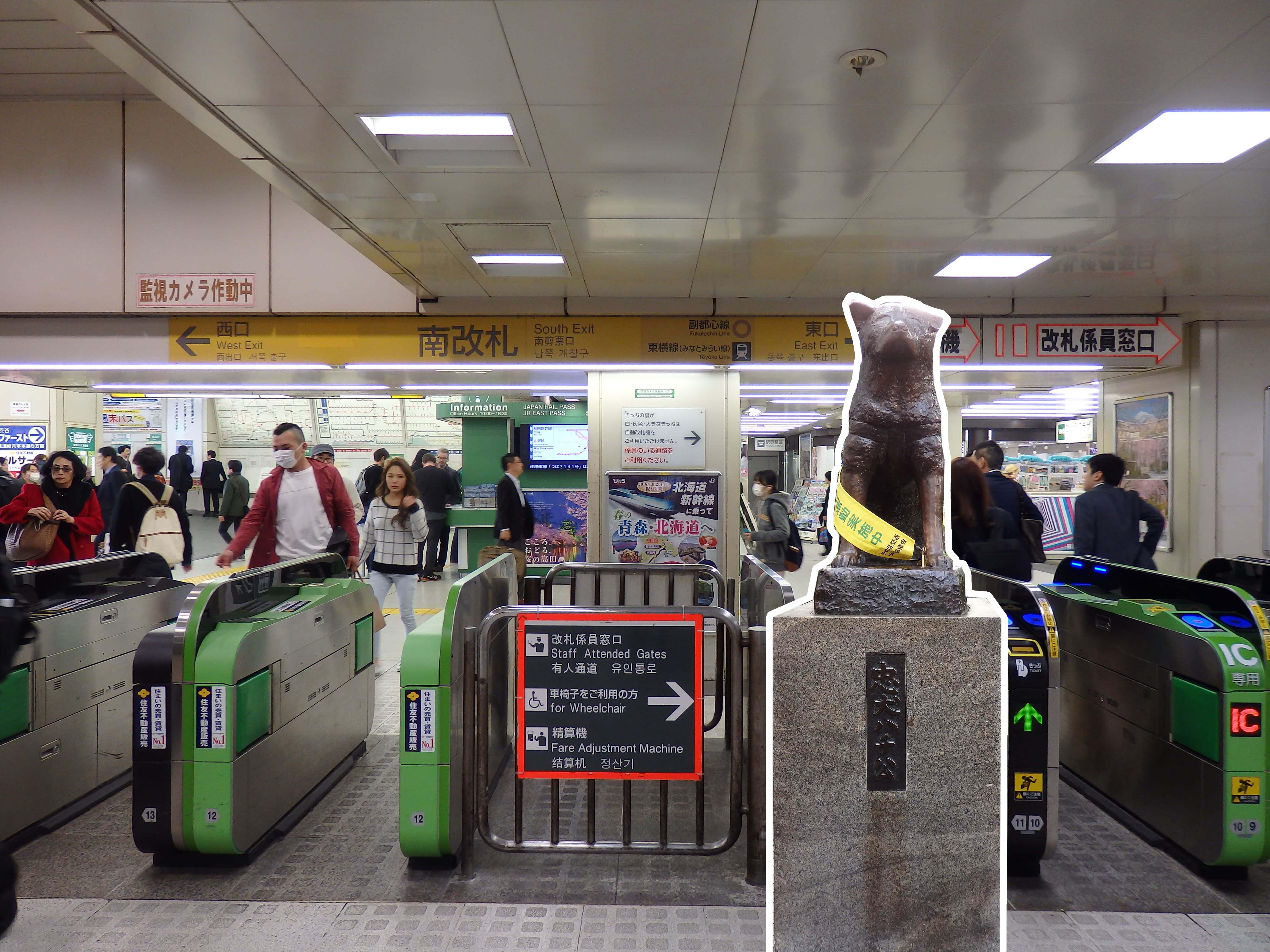 สถานีรถไฟชิบุย่า