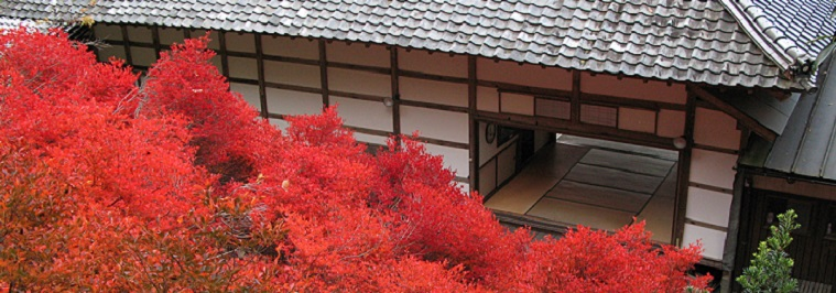 Dajima Ankokuji02