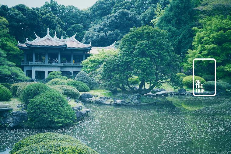 รีวิวประเทศญี่ปุ่น