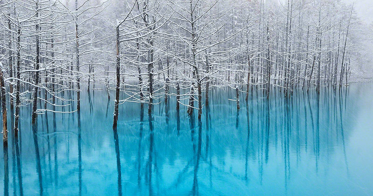 pond-snow-frozen-kent-shiraishi-hokkaido-fb