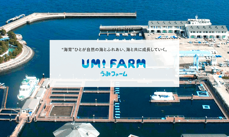 umifarm-visual-02