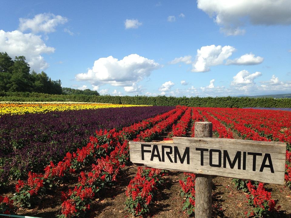 farm-1566163_960_720