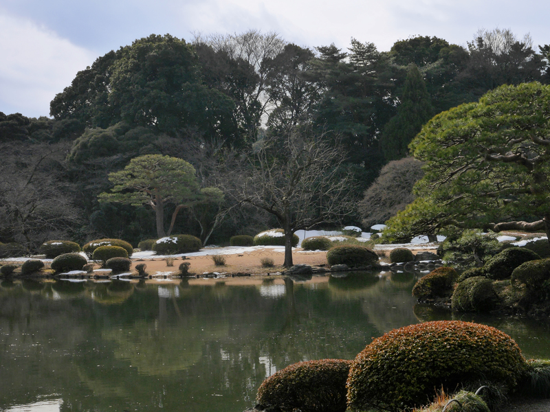 อุทยานแห่งชาติชินจุกุ