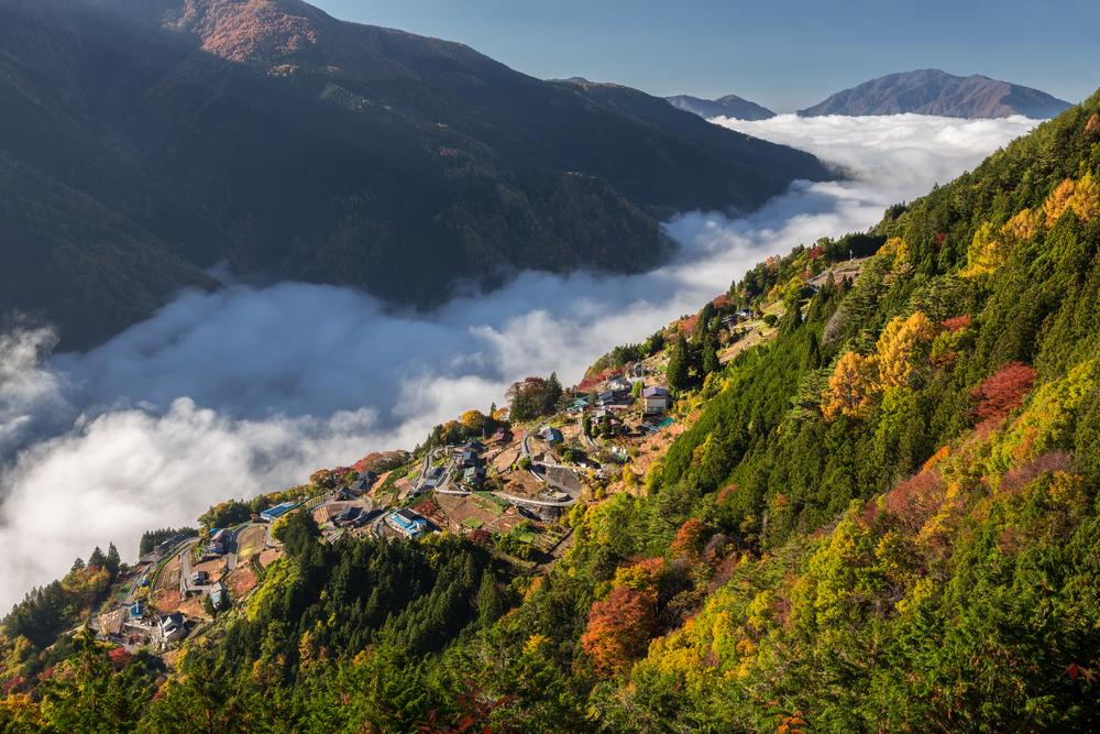 Shimoguri-no-sato-Nagano-prefecture-Japan