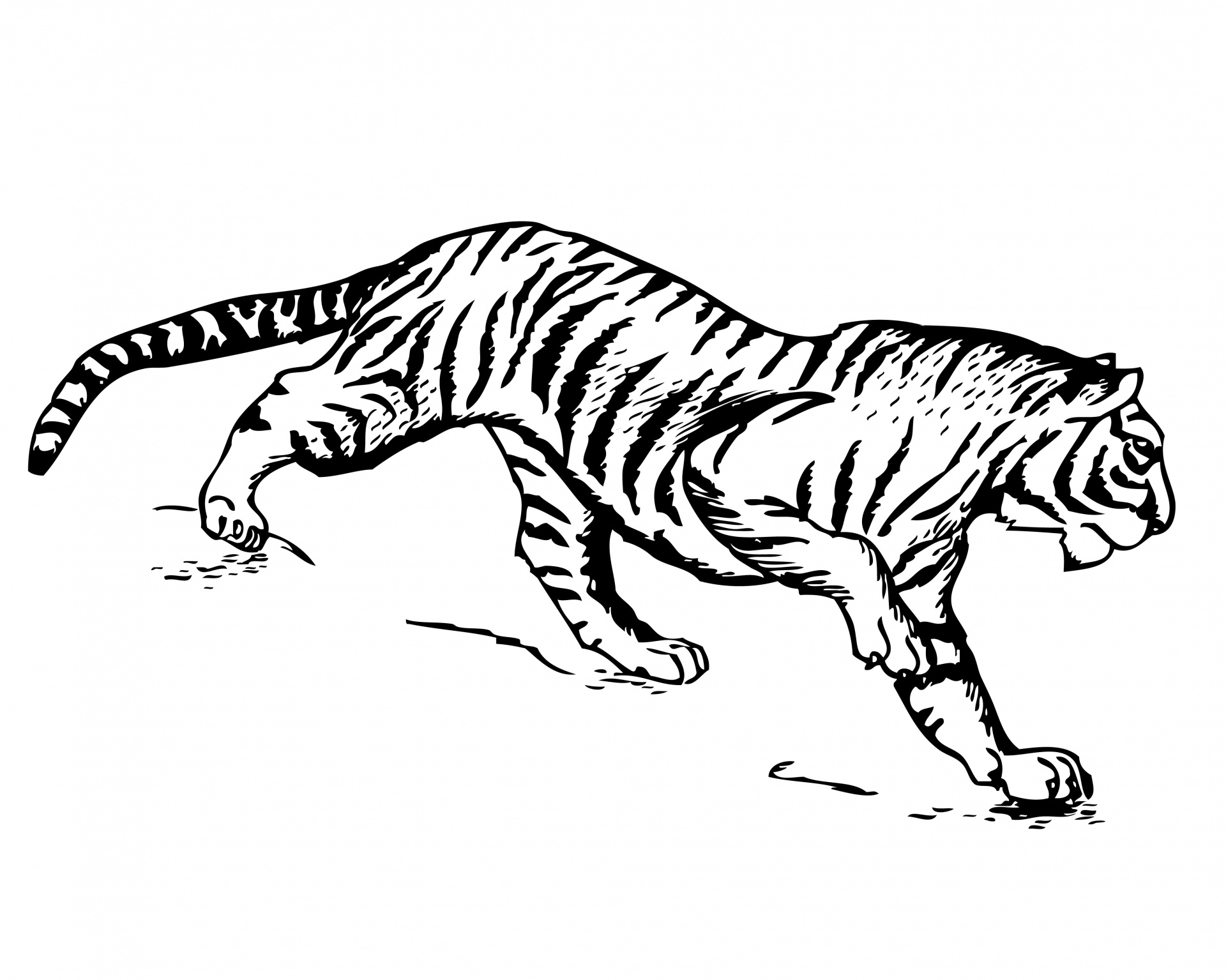 tiger-clipart-illustration-1461009833u5d