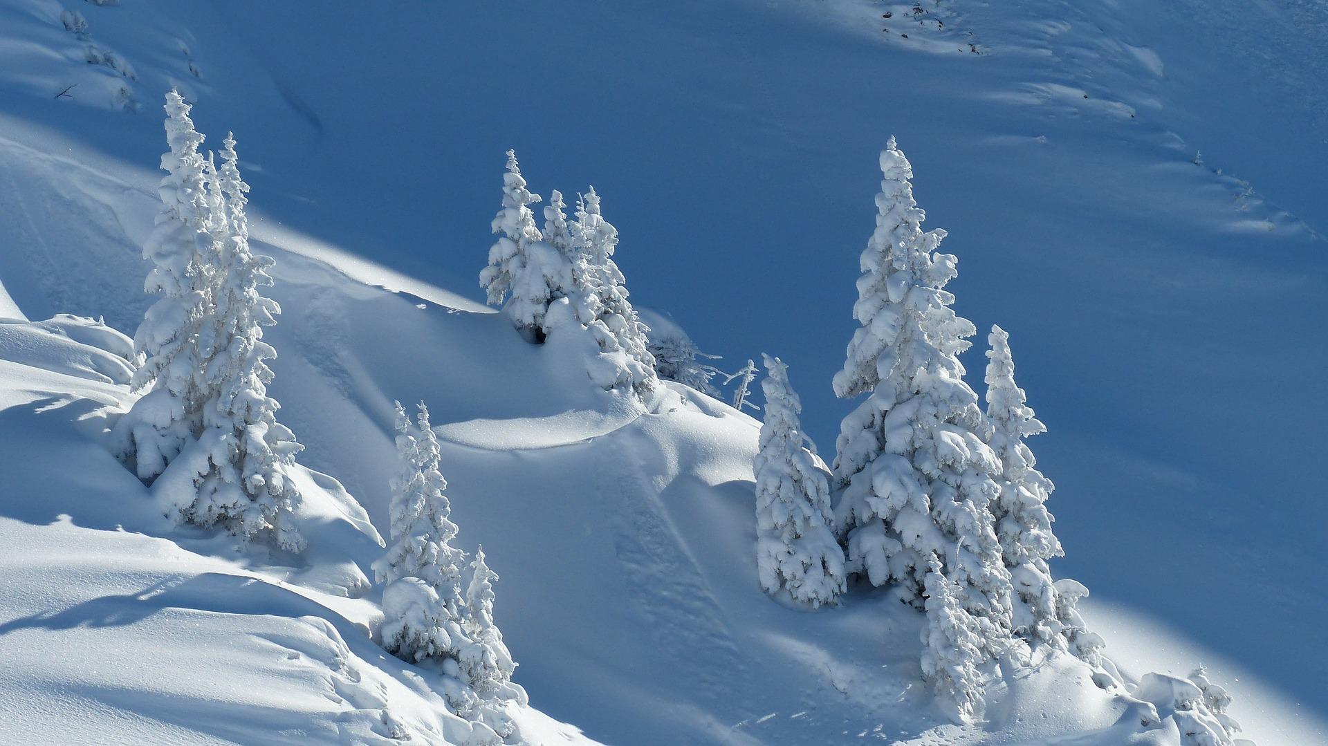ฤดูหนาวที่ญี่ปุ่นกำลังมา … กิจกรรมเล่นสกีที่ญี่ปุ่น ก็ต้องมีกับ แพ็คเก็จเล่นสกี 7วัน